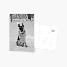 work-13832447-default-u-card-post