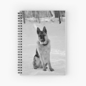 work-13832447-default-u-notebook-spiral
