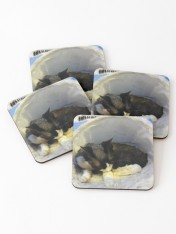 work-42357958-primary-u-coasters