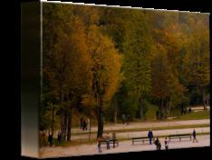 Schnbrunn-Palace_art